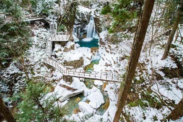 冬の遊森公園