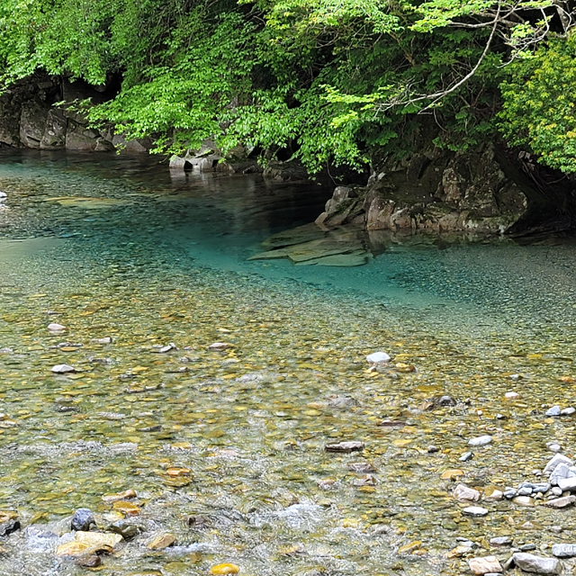 付知川の上流