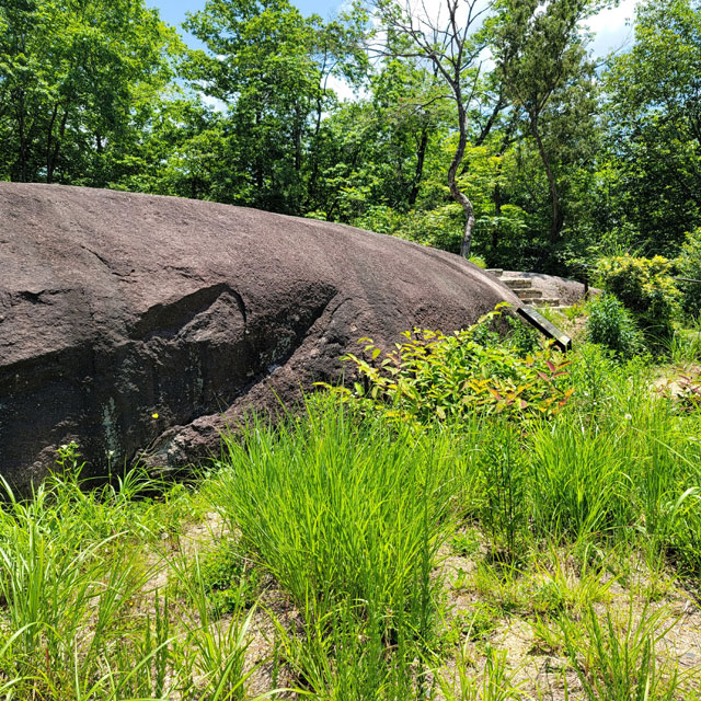 花崗岩の一枚岩
