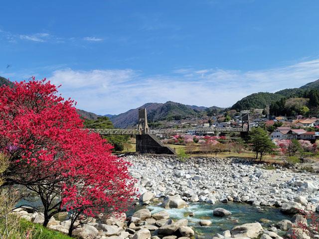 長野県の桃介橋