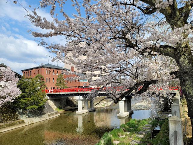 中橋(好きな岐阜の橋ランキング5位)
