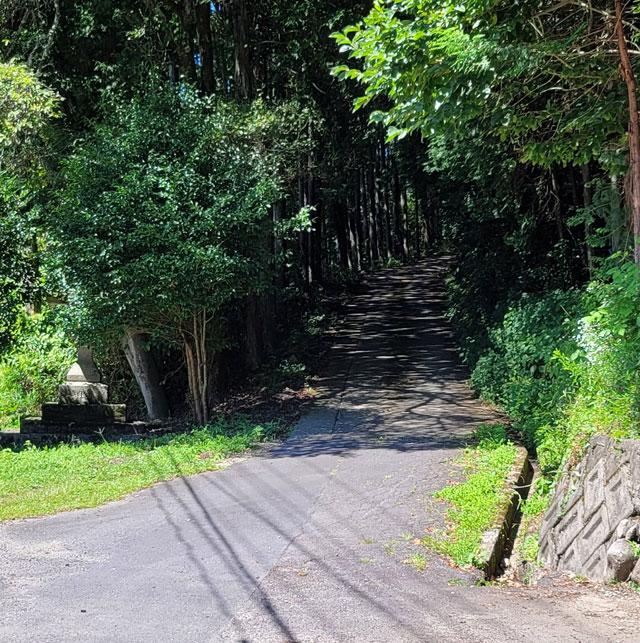 木々が生い茂る河合神社の坂道