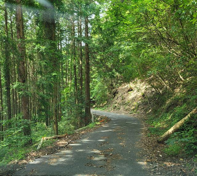 ガードレールが無い山道を延々と走る