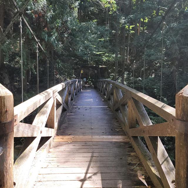 吊り橋を渡る